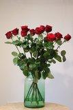 Rode rozen_