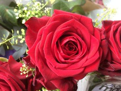 Rode rozen luxe verpakt