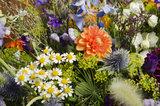 Afscheidsbloemen paars & oranje_